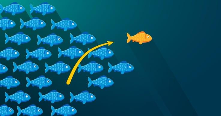 Liidien generointi verkkosivuilla helposti HubSpotin LeadFlown avulla